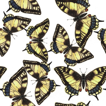 machaon: Hand drawn watercolor seamless pattern with colorful tropical machaon butterflies Stock Photo
