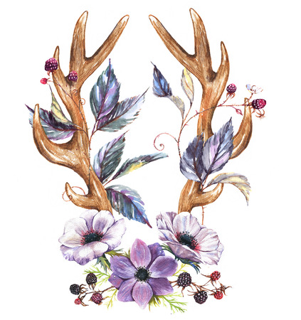 Beautiful  illustration with the watercolor anemone flowers and  antlers. Floral composition in boho style - antlers drawing with berries, anemone blossom and blackberry branches.
