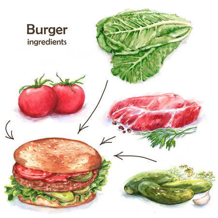 Hand-drawn watercolor fast food drawing. Illustration of the different ingredients of the burger: tomatoes, pickles, meat, salad Reklamní fotografie