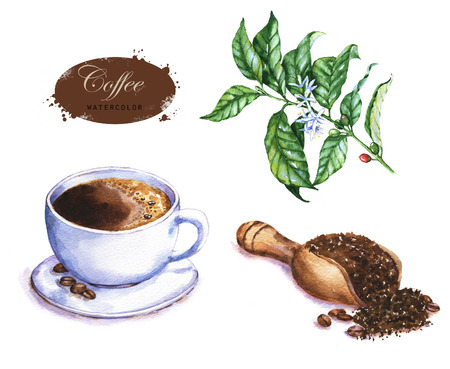 Hand-drawn watercolor illustration of the coffee. Cup of the espresso, coffee beans, green  branch and ground coffee isolated on the white background.