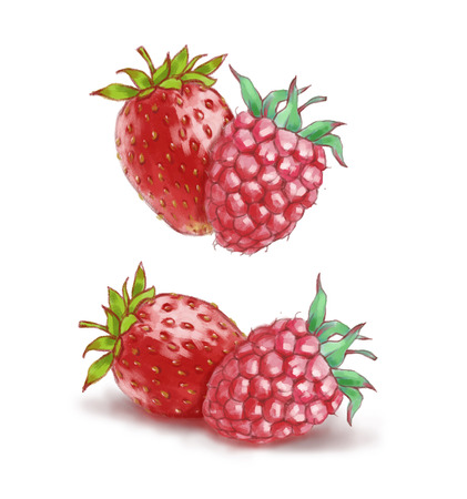 Hand drawn watercolor illustration of the healthy food. Raspberry and strawberry isolated on the white background