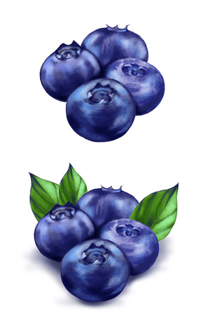 Hand drawn watercolor illustration of the food: ripe tasty blueberries, isolated on the white background