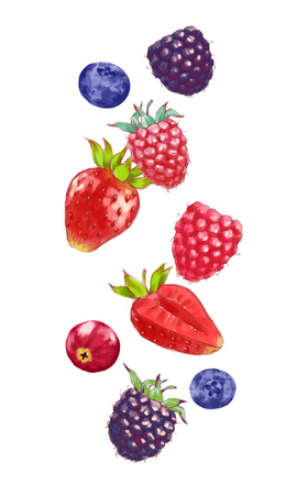 Hand drawn watercolor illustration of the food: ripe tasty cranberry, strawberries, raspberries, blueberries and blackberries isolated on the white background