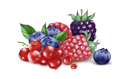 Hand drawn watercolor illustration of the food: ripe tasty red currants, blueberries, blackberry and raspberries isolated on the white background 版權商用圖片