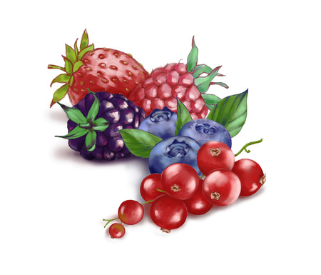 Hand drawn watercolor illustration of the food: ripe tasty red currants, blueberries, blackberry, strawberry and raspberry isolated on the white background