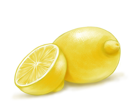 Hand drawn watercolor illustration of isolated yellow lemon on the white background