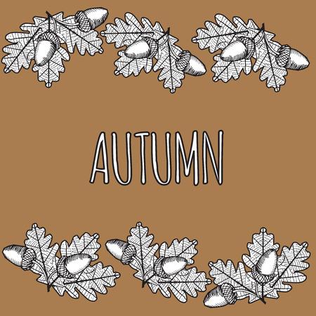 venation: iluustration of Leaf Skeleton with acorn