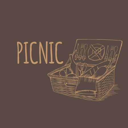 vegetable basket: Vector doodle vintage picnic basket with food and drinks, outline picnic container with vegetable, hand drawn retro picnic box