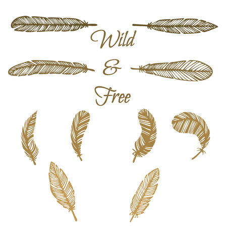 feathering: hipster feather elements, vintage doodle outline feather