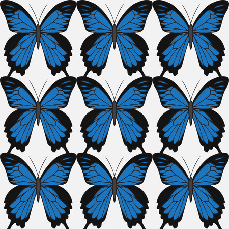 Big realistic collection of colorful butterflies.  Papilionidae ulysses, summer flying insects set for greeting cards and  scrapbook