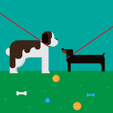 st bernard: flat dog characters set, cartoon pet animal collection, st bernard and dachshund