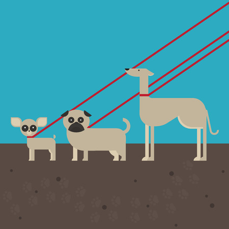 lead: flat dog characters set, cartoon pet animal collection chihuahua, pug and greyhound on the lead