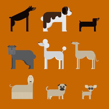 st bernard: flat dog characters set, cartoon pet animal collection chihuahua, doberman andmastiff. Afgan greyhound, st bernard, pug, poodle and dachshund.
