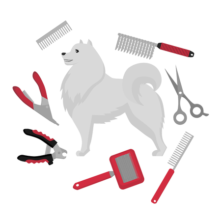 Flat grooming salon equipment set, dog haircut tools icons. Doggy groomer collection, nail clipper, cutter, Slicker and brush, comb, scissors and dematters. Samoyed puppy.