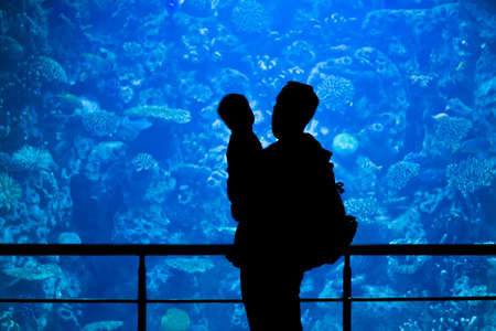 Silhouettes of family watching underwater life. Father and son in the big aquarium Reklamní fotografie
