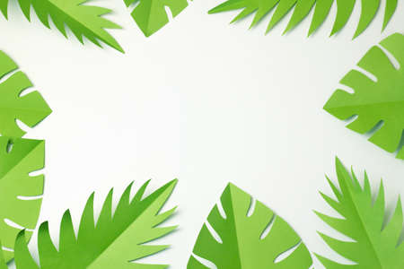 Tropical party decor top view. Paper palm and monstera leaves frame. Banner with Copy Space for text. Green jungle background Flat lay. Summer travel concept