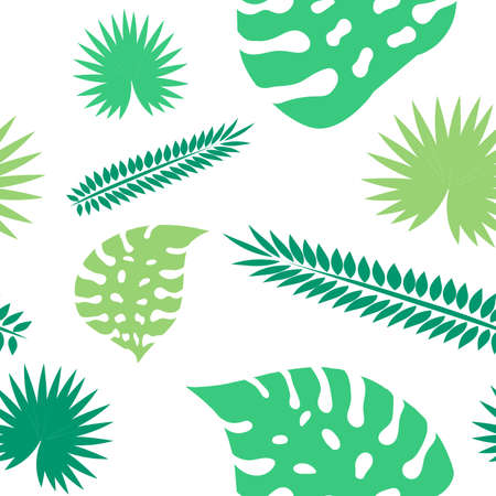 Palm leaves seamless pattern. Tropical leaves isolated on white background