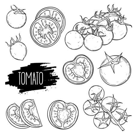 Hand drawn tomato set. Tomatoes, slices, halves, cherry tomatoes and bunch isolated on white background. Outline ink slyle sketch. Vector coloring illustration. Illusztráció