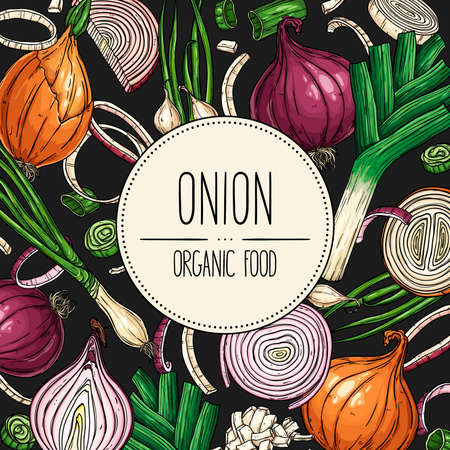 Vector hand-drawn banner onion bulb, slices, halves, pieces, green onion and leek. Vector illustration for shop, book, emblem, menu, label.
