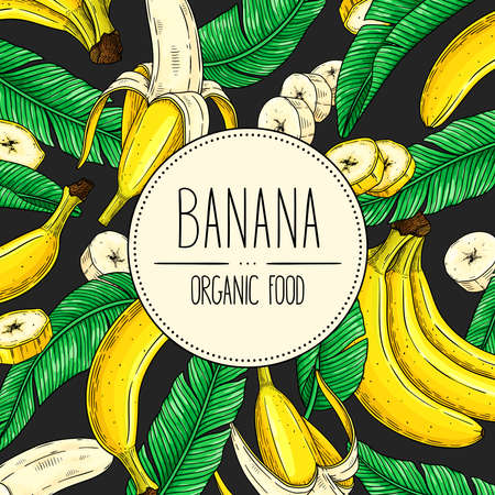 Vector hand-drawn banner with banana, slices pieces, bunch and leaves on dark grey background. Vector healthy fruit illustration for shop, market, book, emblem, menu, label.