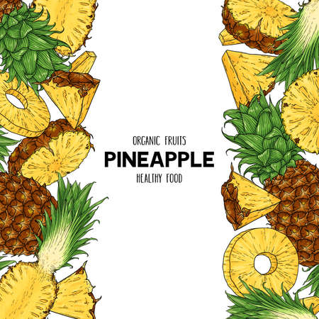 Vector hand drawn frame with whole pineapple, slices pieces, half. Tropical organic illustration