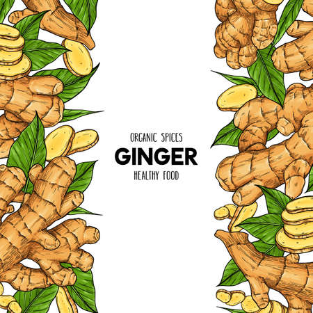 Vector hand drawn frame with organic ginger root, slices pieces and leaves. Natural spices illustration Çizim