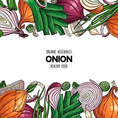 Vector hand drawn frame with onion bulb, slices, halves, pieces, green onion and leek. Organic vegetables illustration Çizim