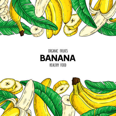 Vector hand drawn fruit frame with banana, slices pieces, bunch and leaves. Healthy organic illustration