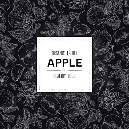 Vector chalkboard style frame with organic apple, half, flower, branch, leaves and label. Fruits hand drawn doodle sketch illustration.