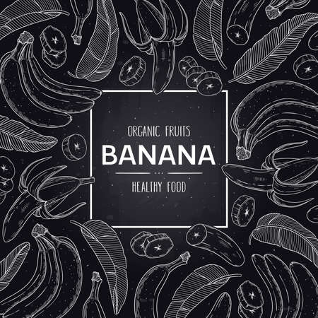 Vector chalkboard style frame with organic banana, slices pieces, bunch and leaves. Tropical hand drawn doodle sketch illustration. 向量圖像