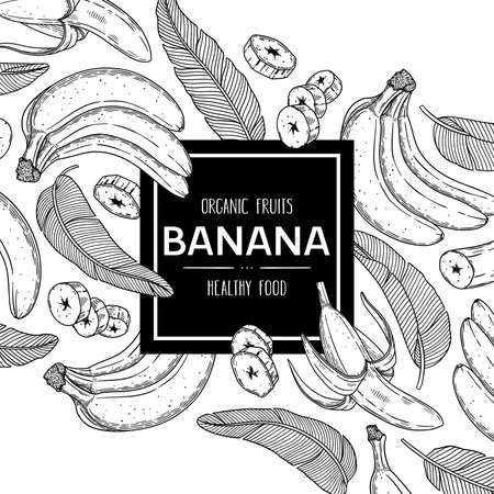 Vector hand drawn background with organic banana, slices pieces, bunch and leaves. Outline ink style illustration.
