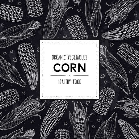 Vector hand drawn doodle frame with organic corn cobs, grain and label. Healthy sketch cereal illustration in chalkboard style.