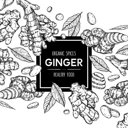 Vector hand drawn background with ginger: root, slices pieces and leaves. Outline ink style illustration.