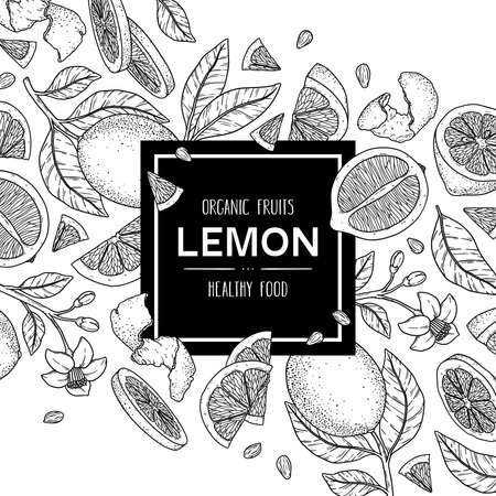 Vector hand drawn background with organic whole lemon, slices pieces, half, flower and leaves. Outline ink style illustration.