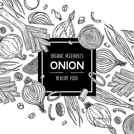 Vector hand drawn background with natural onion bulb, slices, halves, pieces, green onion and leek. Outline ink style illustration.