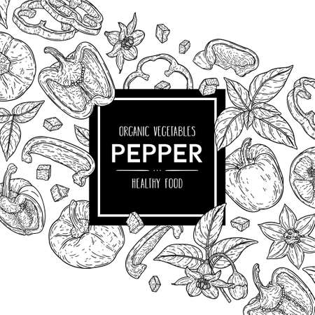 Vector hand drawn background with natural bell peppers, slices, halves, pieces, flower, branch and leaves. Outline ink style illustration. 向量圖像