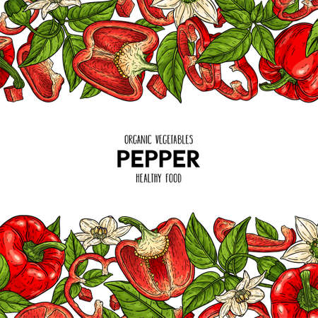 Vector hand drawn frame with bell peppers, slices, halves, pieces, flower, branch and leaves. Organic vegetables illustration