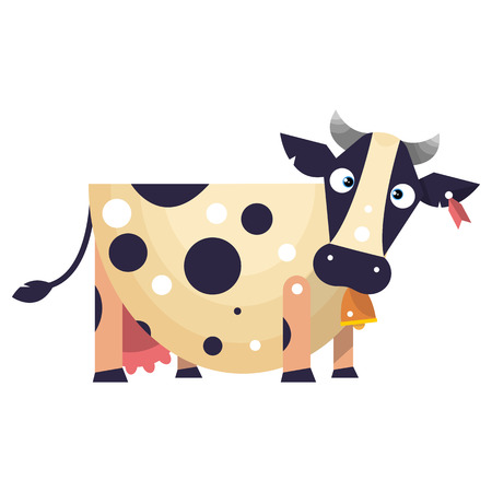 udders: Funny cow with tag in ear and bell on the neck.