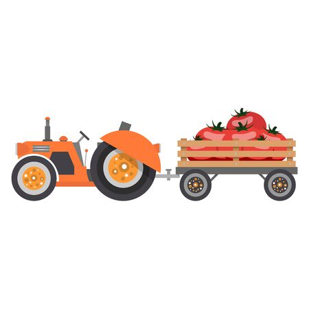A tractor with a trailer truck driven by a crop of tomatoes. Vector illustration isolated on white background. 矢量图像