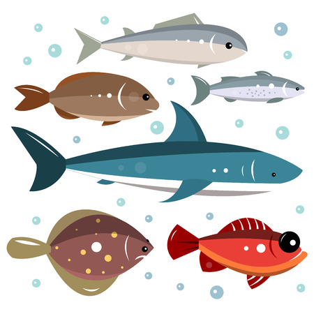 small group of objects: Set of sea fishes isolated on a white background. Vector illustration for design. Illustration