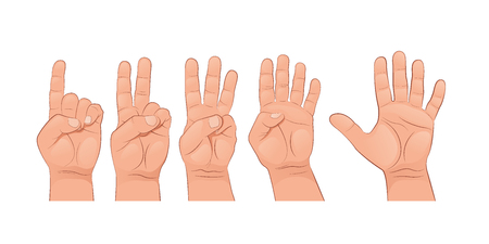 A set of hands. The finger gestures. Vector illustration isolated on white background. Vectores