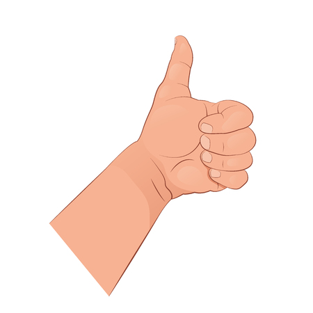 Thumb up. The gesture of the hand showing like. Vector illustration isolated on white background.