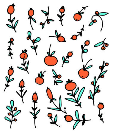 Winter vector pattern with holly berries. Part of Christmas backgrounds collection. Can be used for wallpaper, pattern fills, surface textures, fabric prints.set of cute twigs with red fruits berries and turquoise leaves black outline on a white background hand drawn in vector style