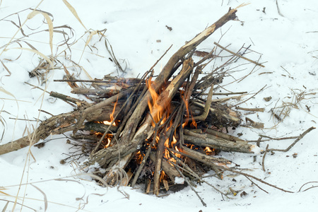 Bonfire in the winter, tree branches and fire, close-up.