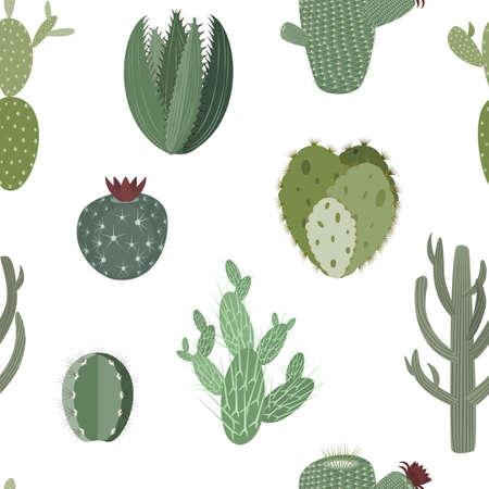 Thorny cactus and succulents vector seamless background pattern Çizim