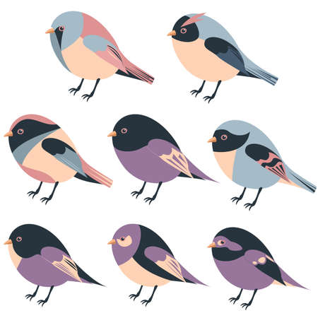 cartoon feathered and winged birds set collection in flat style 일러스트