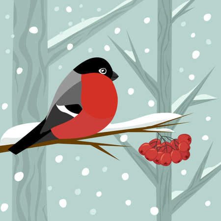 Bird bullfinch sit on branch of rowan-tree with bunch of red rowanberry in winter snow forest, vector illustration