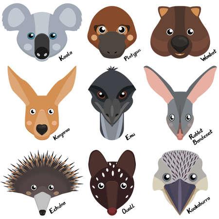 heads and muzzles of wild australian animals, wombat, echidna, kangaroo, koala, rabbit bandicoot, ostrich emu, quoll, platypus. Cartoon collection of vector clipart on white background Illusztráció