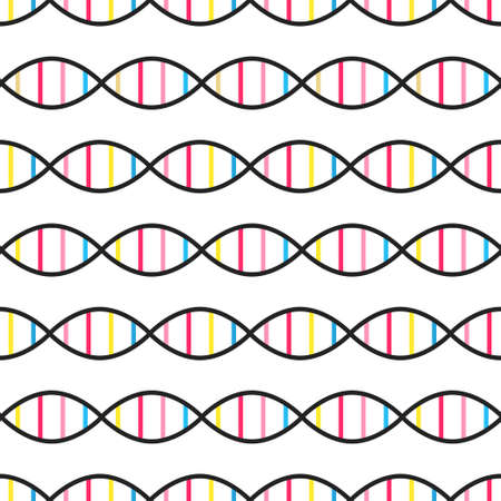 DNA structure isolated on white background. Scientific seamless pattern. Biology and genetic. DNA molecule. Flat design for banner, poster. Stock vector illustration. Foto de archivo - 150413310