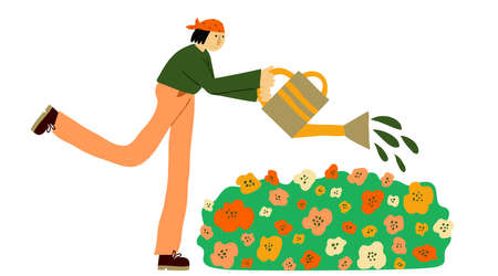 Young caucasian woman working in garden. Female gardener in casual clothing watering flowers with watering can. Isolated on white. Gardening concept. Fun Flat style drawing. Stock vector illustration.
